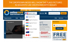 Choose up to 3 modes for flags pictures display with our Magento 2 language flags module