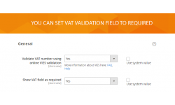 Magento 2 Checkout Vat module general settings.