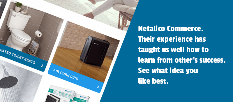 Case Study: Netalico Commerce. Their experience has taught us well how to learn from other's success. See what idea you like best.